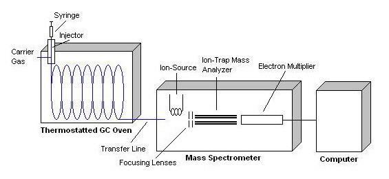 ms system